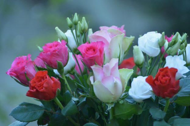 Statt Seitensprung ein Blumenstrauß